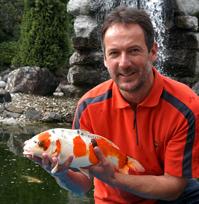 Koi Goldfische Shubunkin Eigene Fischzucht Hagmans: teichfische deutschland